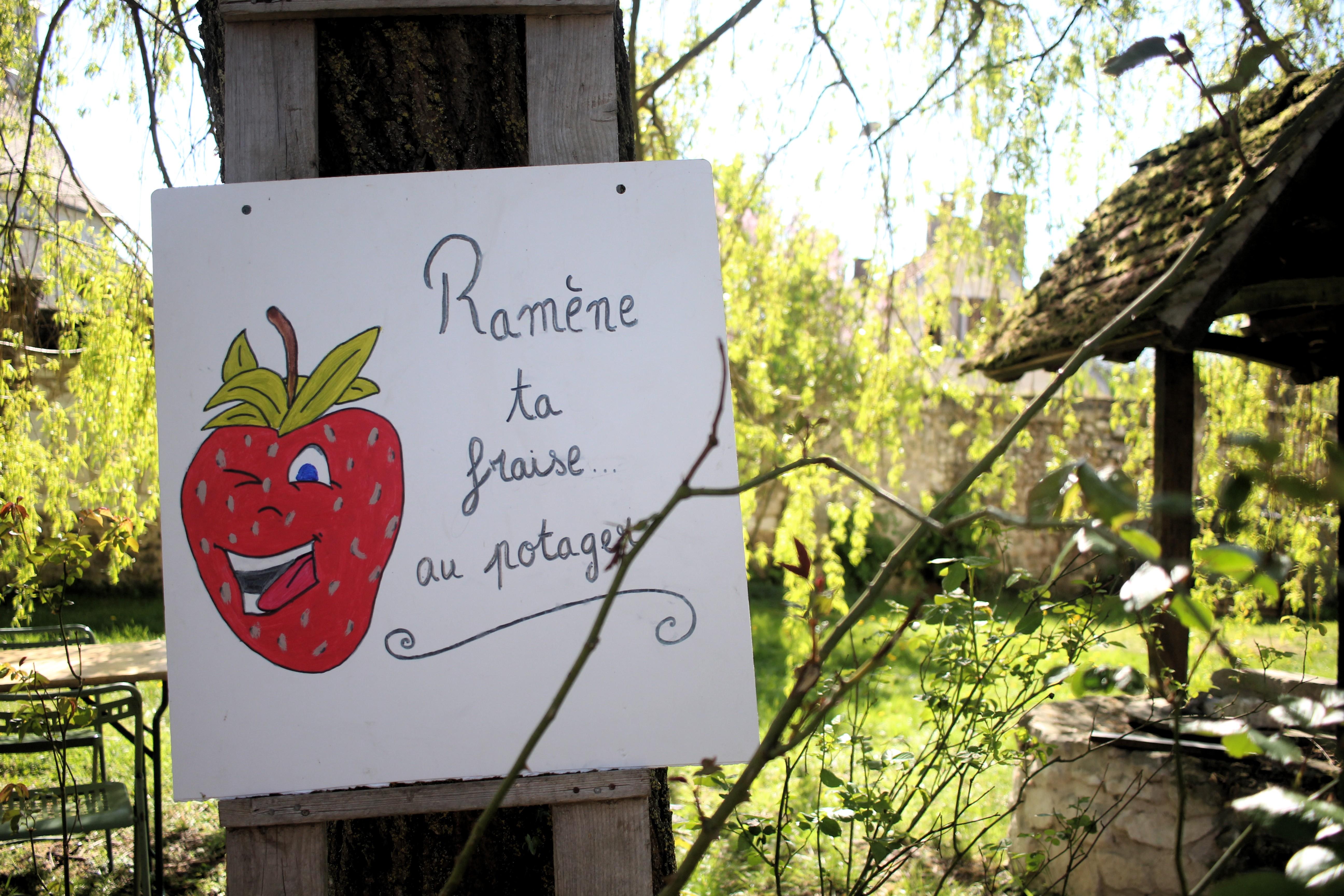 Tentative de design en permaculture